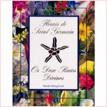 12-rays-book-portuguese