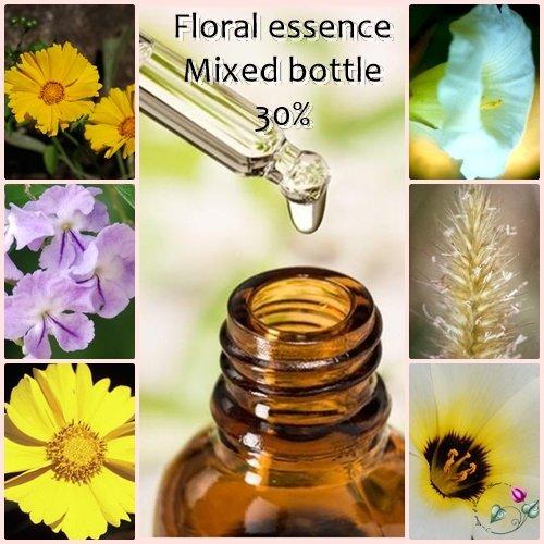 floral-essences-30