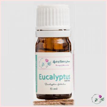 eucalyptus-eo
