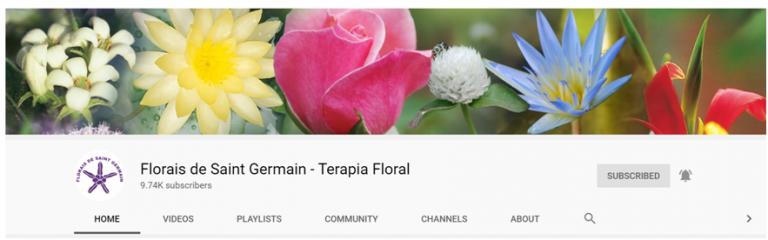 fsg-youtubechannel