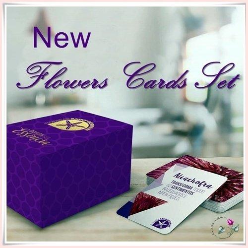 cards-set-fsg