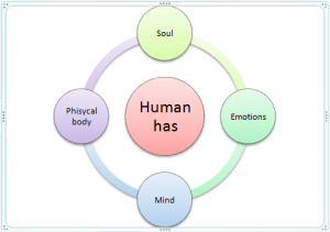 holistic human view