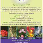 Florais de Saint Germain and Mindfulness
