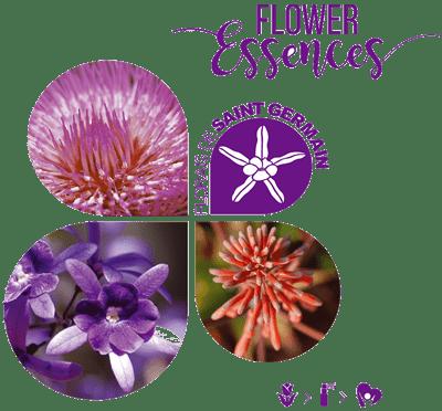 florais de saint germain leaflet