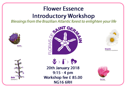 Florais de Saint Germain introductory workshop