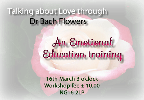 Talking about Love through Bach Flower