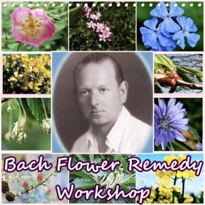 Bach flower workshop