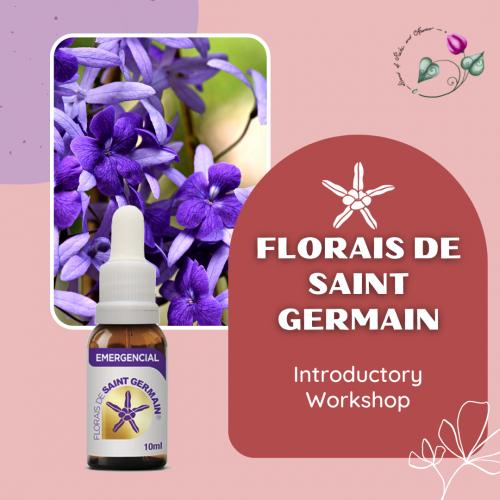 florais-de-saint-germain-introductory-workshop